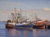 Provincetown Trawlers,16X24_web