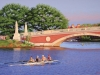 Rowing the Charles (24X36) oil on canvas